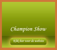 Champion-Show