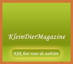 kleindiermagazine